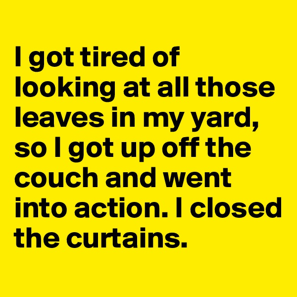 I got tired of looking at all those leaves in my yard, so I got up off the couch and went into action. I closed the curtains.
