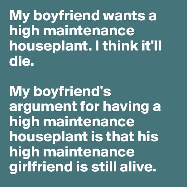 My boyfriend wants a high maintenance houseplant. I think it'll die.   My boyfriend's argument for having a high maintenance houseplant is that his high maintenance girlfriend is still alive.