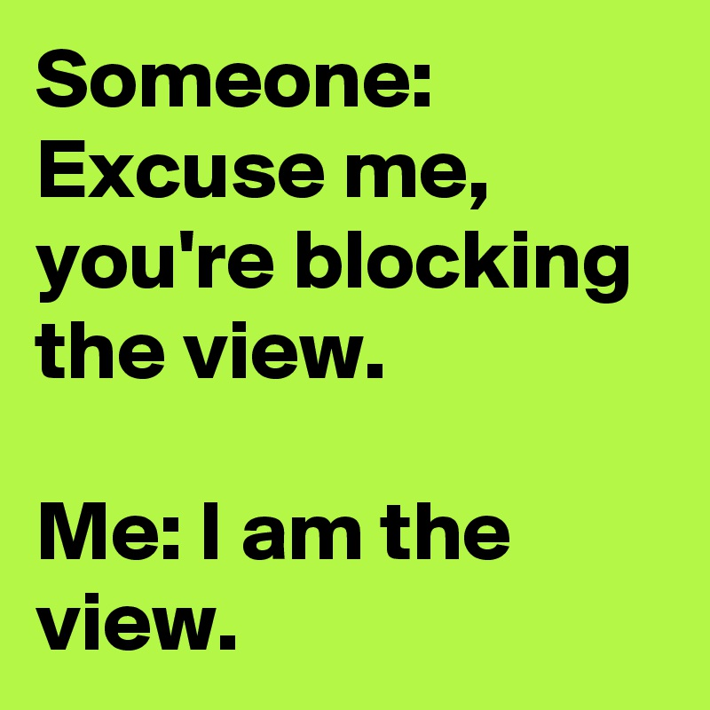 Someone: Excuse me, you're blocking the view.  Me: I am the view.