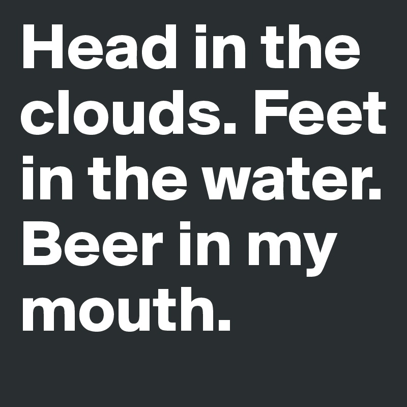 Head in the clouds. Feet in the water. Beer in my mouth.