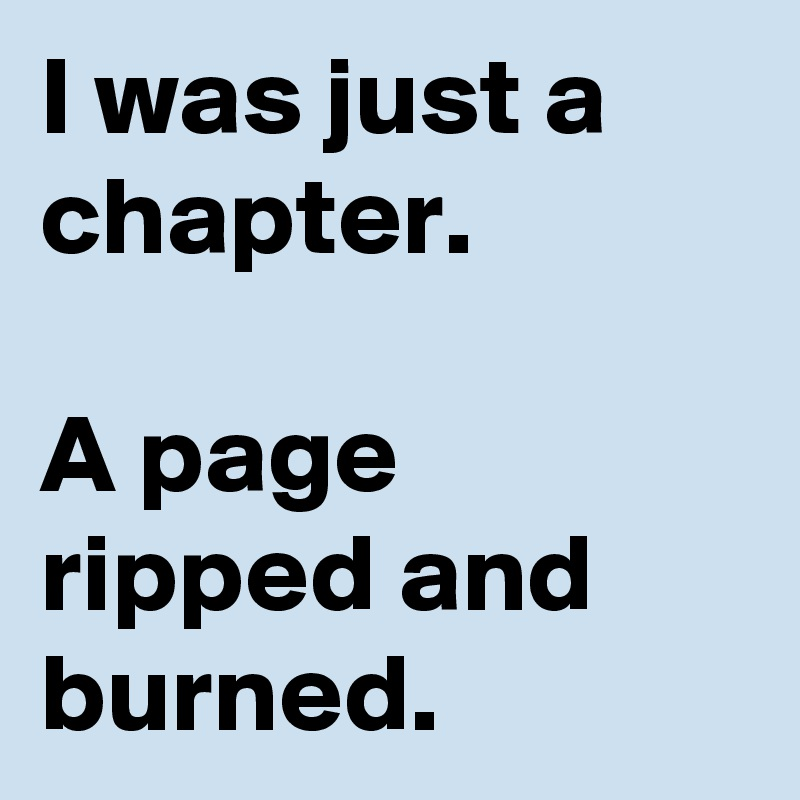 I was just a chapter.  A page ripped and burned.