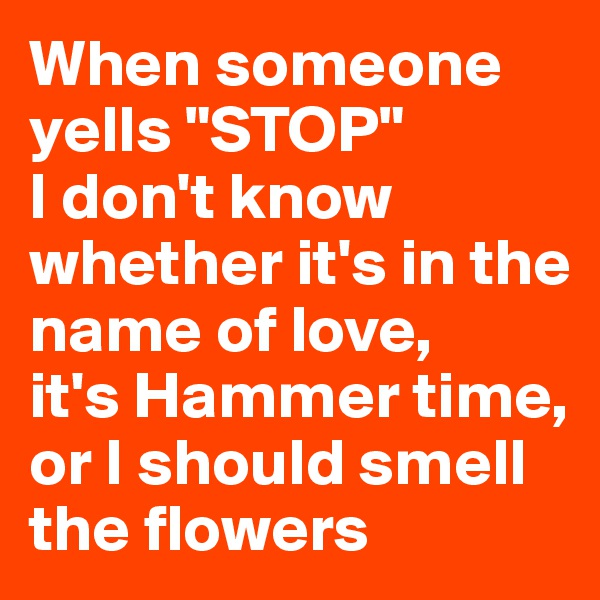 """When someone yells """"STOP"""" I don't know whether it's in the name of love,  it's Hammer time, or I should smell the flowers"""