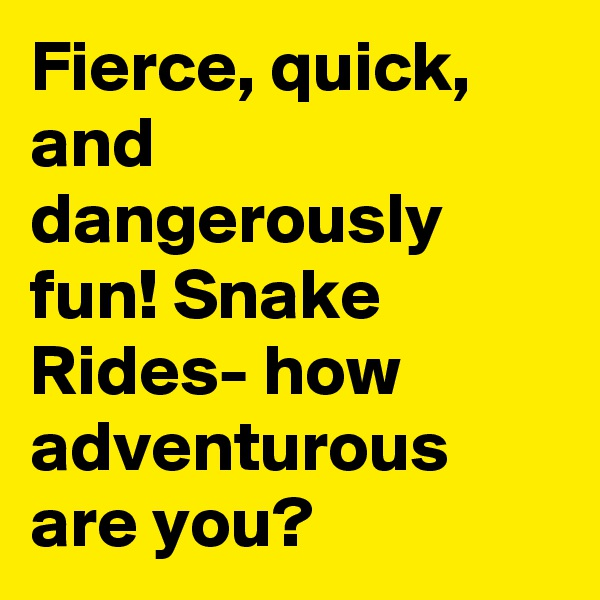 Fierce, quick, and dangerously fun! Snake Rides- how adventurous  are you?