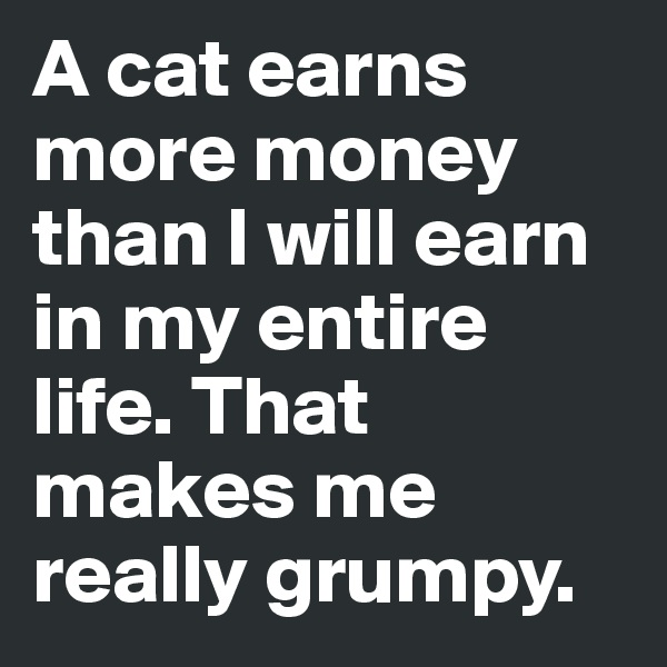 A cat earns more money than I will earn in my entire life. That makes me really grumpy.