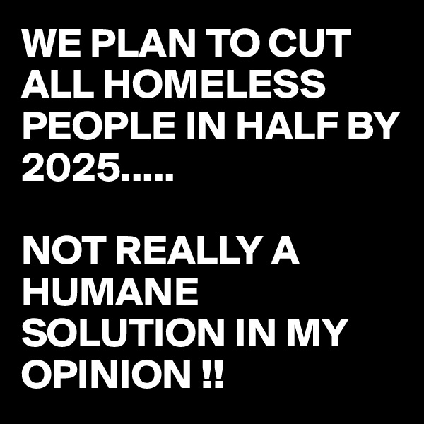 WE PLAN TO CUT ALL HOMELESS PEOPLE IN HALF BY 2025.....  NOT REALLY A HUMANE SOLUTION IN MY OPINION !!