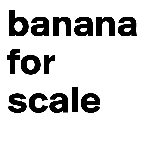 banana for scale