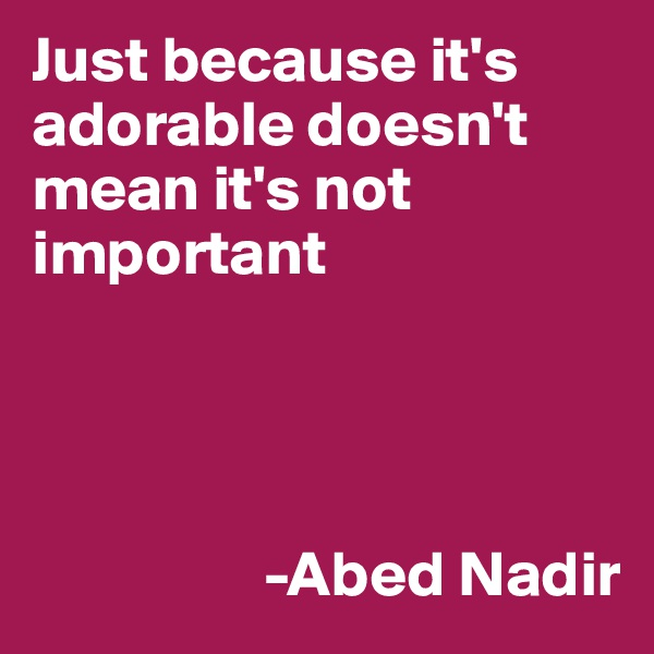 Just because it's adorable doesn't mean it's not important                        -Abed Nadir