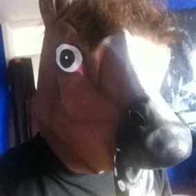 FloppyHorse on Boldomatic - I'm a horse & I'm floppy.